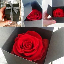 coffret rose éternelle artifleurs