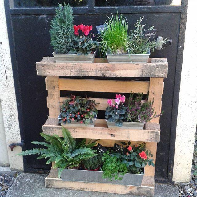 Palette De Bois Recycl E Plantes Aromatiques Artifleurs