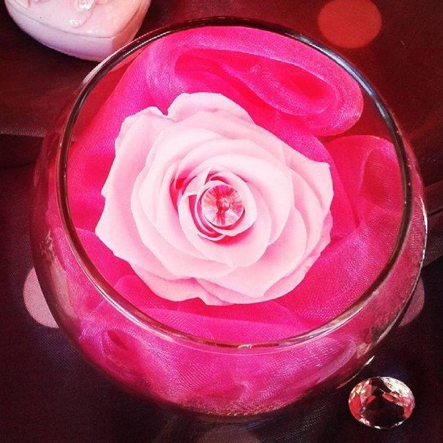 Cadeau saint valentin rose stabilis e composition florale for Livrer une rose