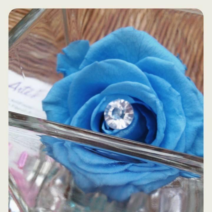 Rose bleue artifleurs
