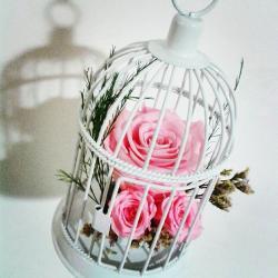 fleur éternelle artifleurs