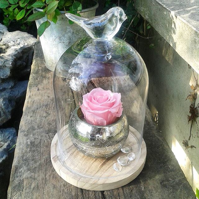 artifleurs roses ternelles naturelles fleurs artificielles. Black Bedroom Furniture Sets. Home Design Ideas
