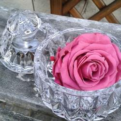 fleurs eternelles artifleurs