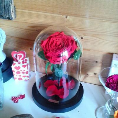 destockage promotions artifleurs fleurs artificielles. Black Bedroom Furniture Sets. Home Design Ideas