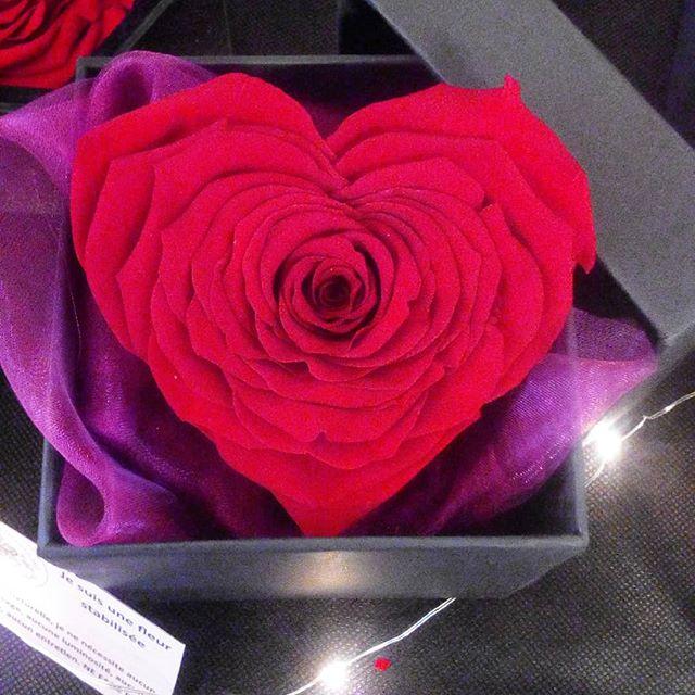 rose coeur artifleurs