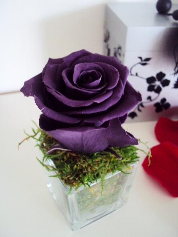 art floral d coration fleurs mariage roses stabilis es. Black Bedroom Furniture Sets. Home Design Ideas