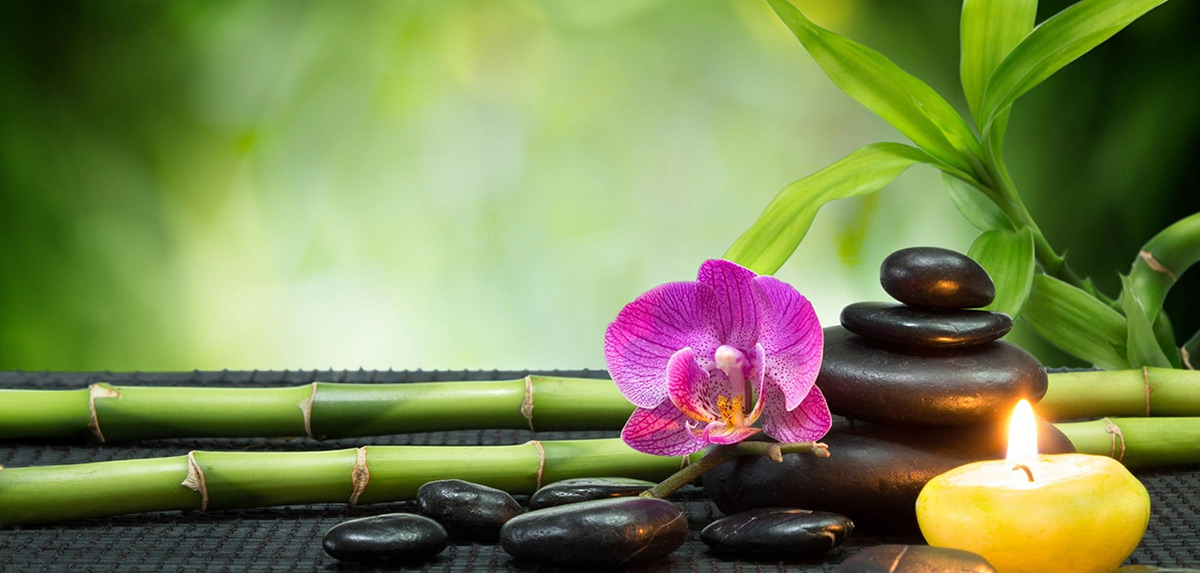Zen & Senteurs artifleurs