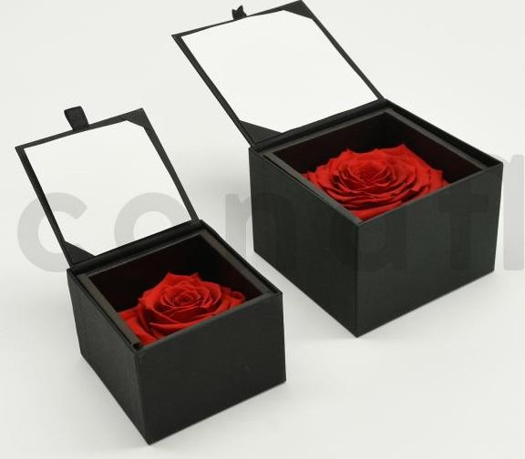 Bloominbox ecrin noir rose stabilisee rouge