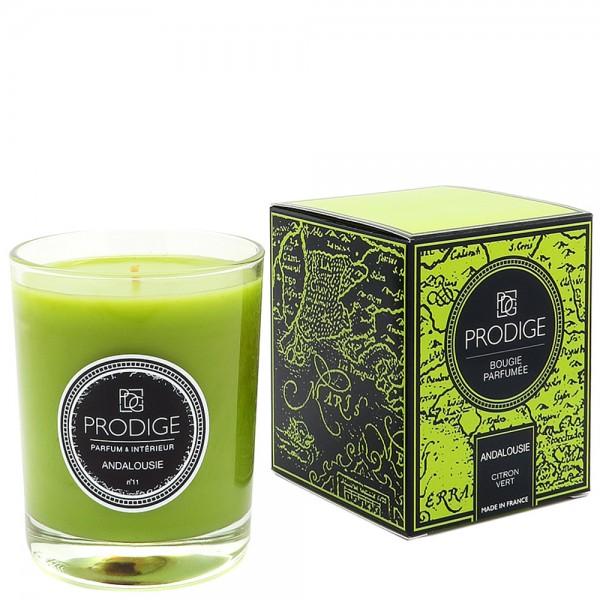 Bougie parfumee andalousie citron vert