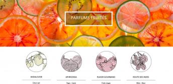 Bougies fruitees artifleurs