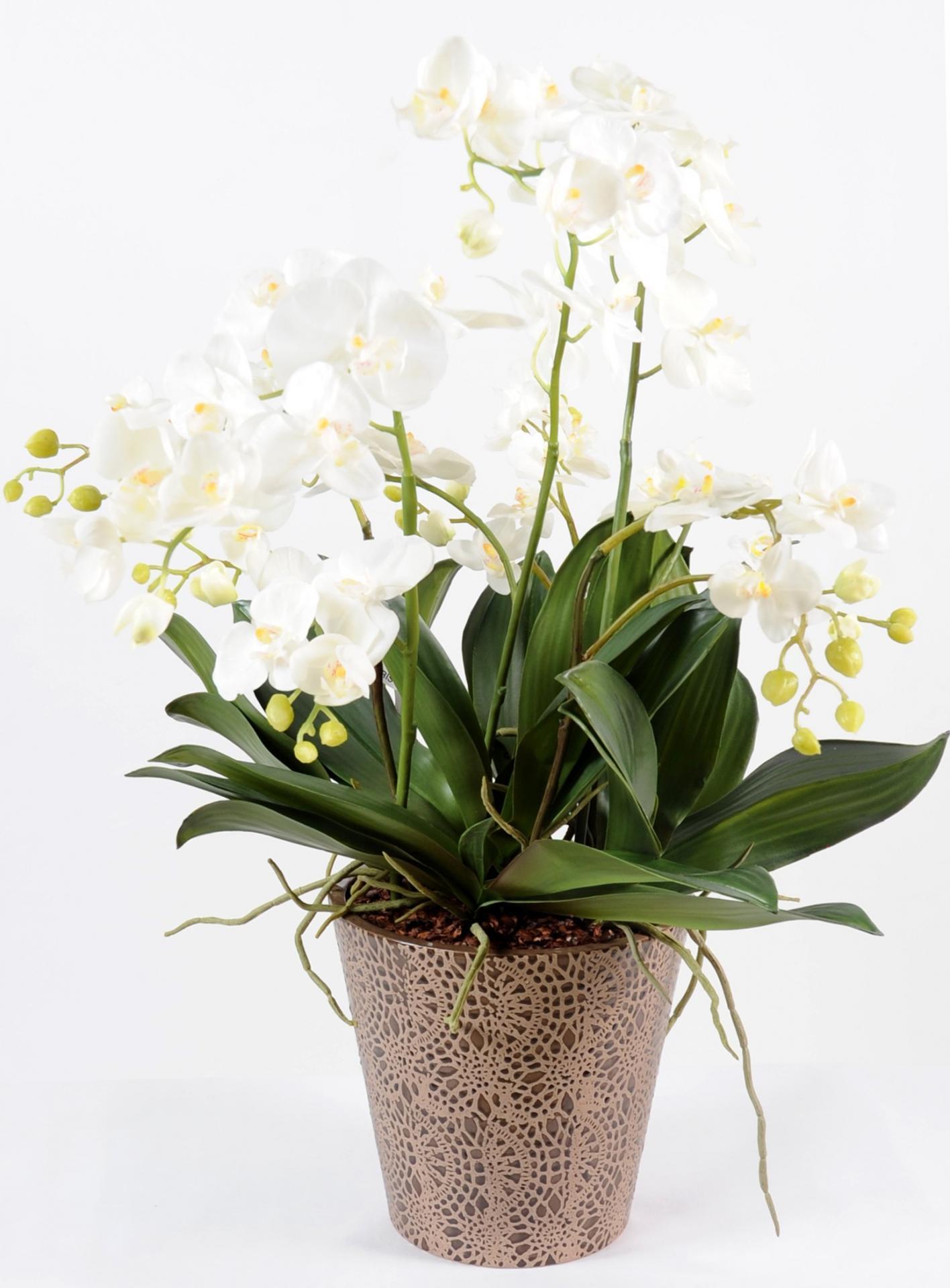 Bouquet phalaenopsis 100cm artifleurs