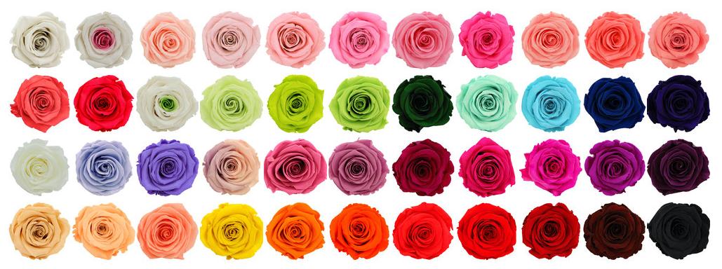 Chez artifleurs choisissez votre couleur