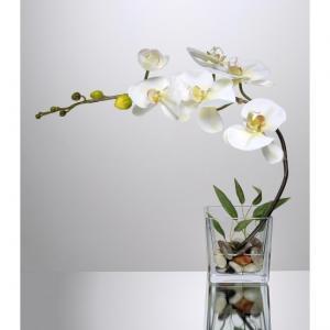 Cube 6 orchidees artificielles