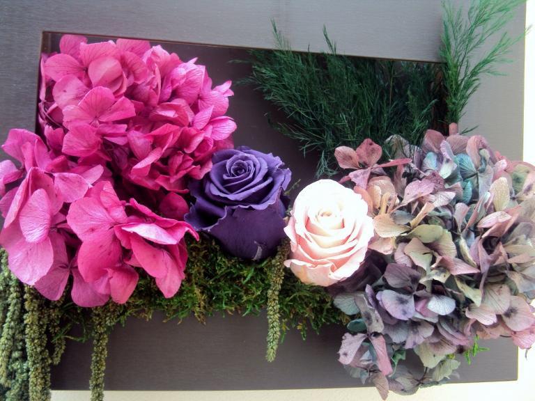 tableau hortensia roses mousse 35x25cm fleurs naturelles. Black Bedroom Furniture Sets. Home Design Ideas