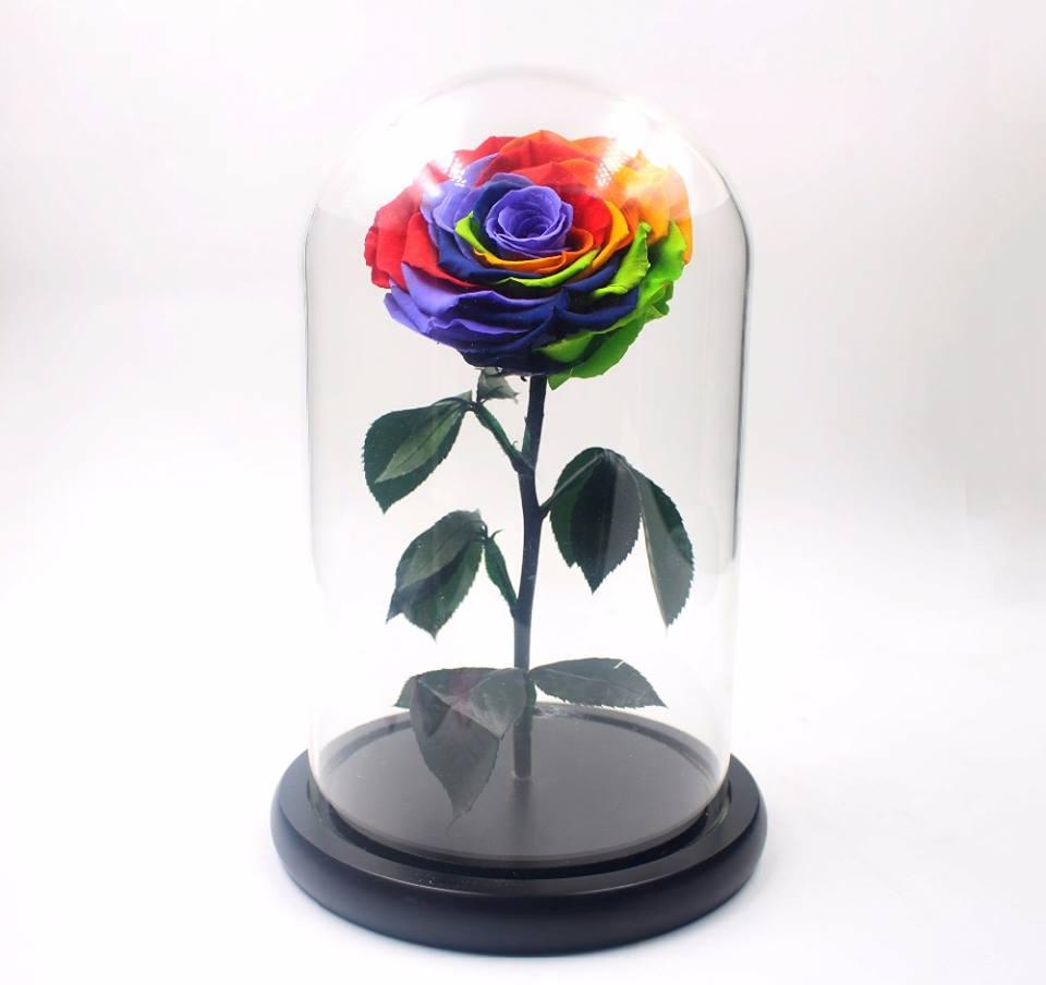 """cloche rose éternelle """"princesse rainbow"""" arc en ciel 26cm"""