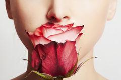 Rose parfumee3
