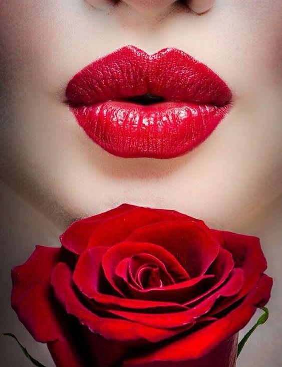 Rose parfumee5