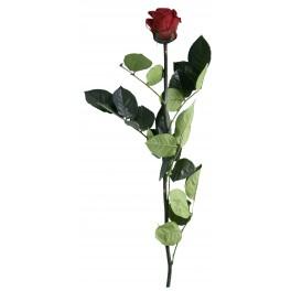 Rose tige amor artifleurs