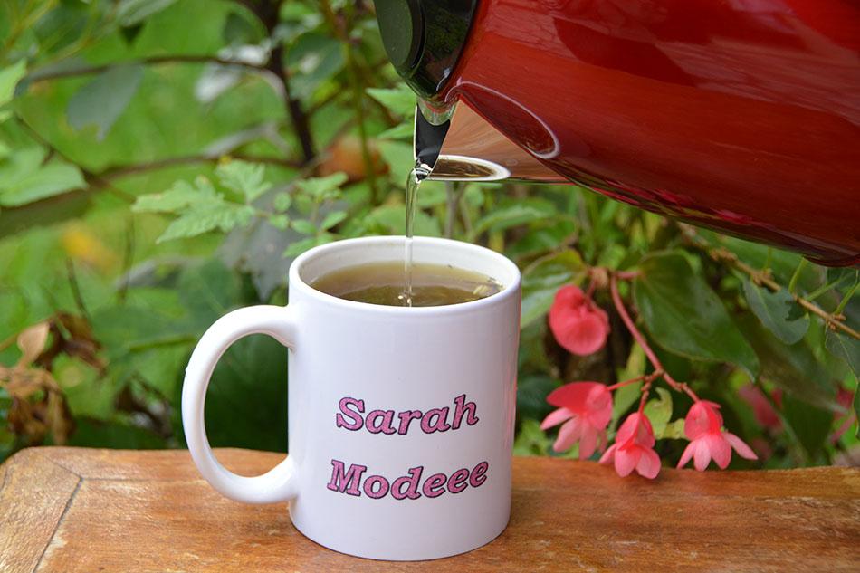 Sarah modeee005