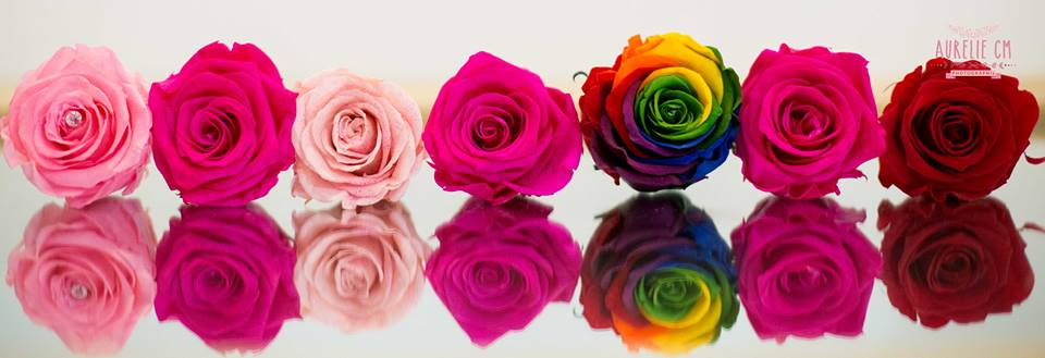 Choisissez votre couleur préférée