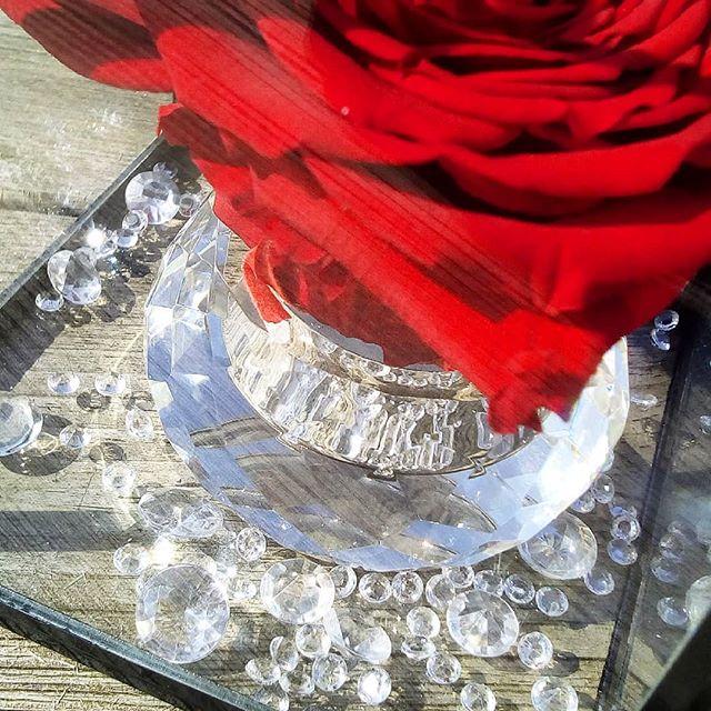 boite verre laiton rose ternelle xxl l 39 enchanteresse. Black Bedroom Furniture Sets. Home Design Ideas