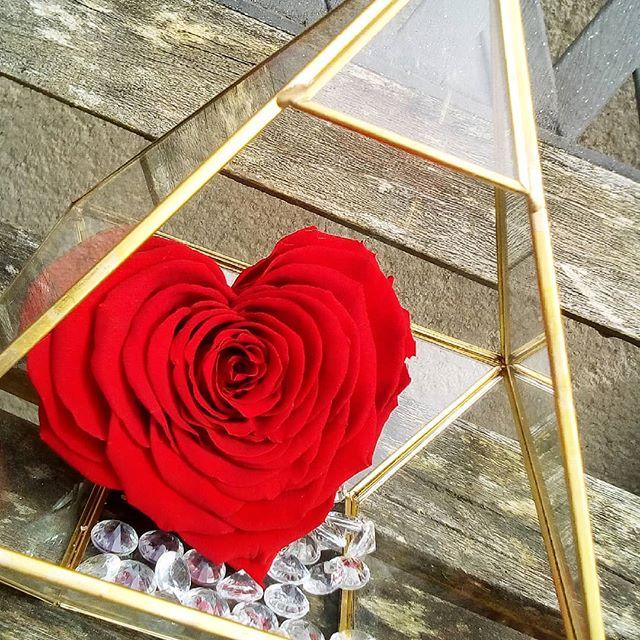 boite terrarium verre laiton rose ternelle coeur xxl. Black Bedroom Furniture Sets. Home Design Ideas