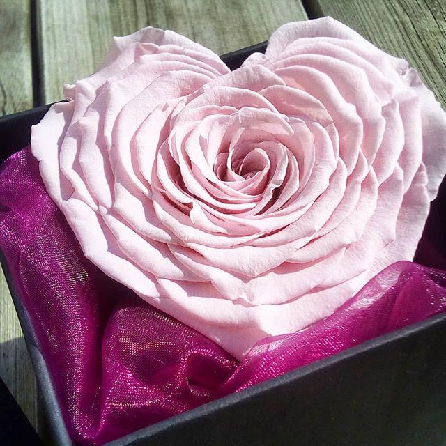 boite verre laiton rose ternelle xxl coeur de diamant. Black Bedroom Furniture Sets. Home Design Ideas