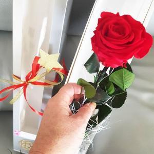 Bouquet et rose sur tige