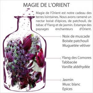 Aromalife magie de l orient