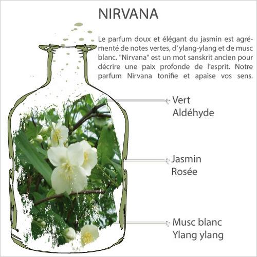Aromalife nirvana 1