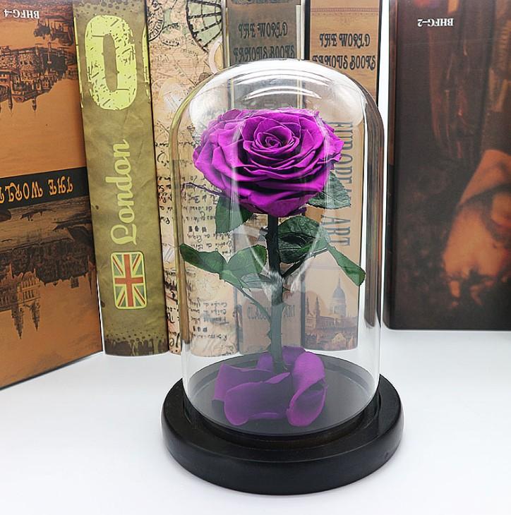 Belle violet