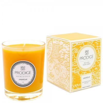 Bougie parfumee jamaique fruits exotiques epices