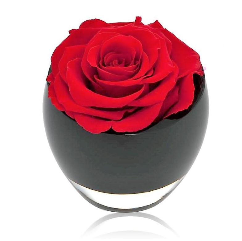 Boule noire rose xxl