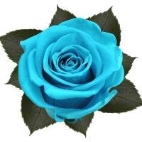 Bouquet 3 roses bleu2