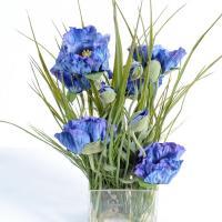 Bouquet bleu sauvage