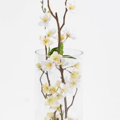 Bouquet cerisier