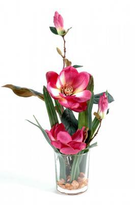 Bouquet magnolia