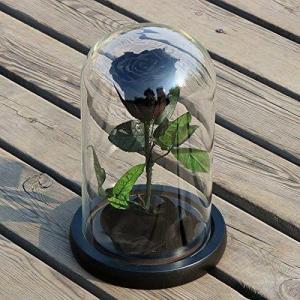 Cloche verre black rose