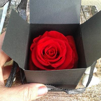 Coffret rose eternelle parfumee artifleurs collier arbre de vie