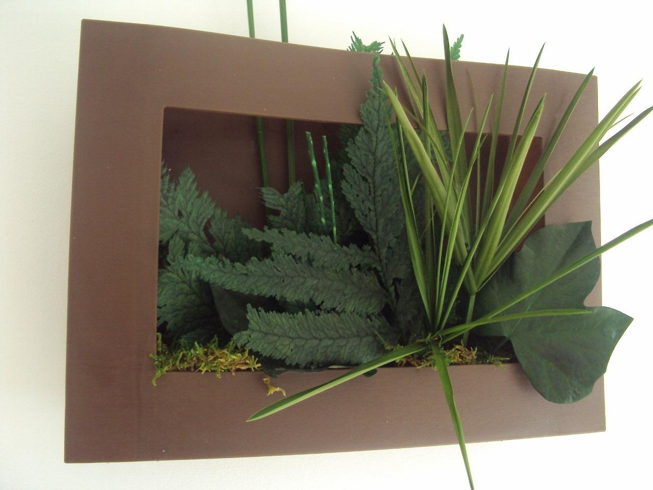 tableau vegetal papyrus lierre mousse 35x25cm plantes naturelles stabilis es. Black Bedroom Furniture Sets. Home Design Ideas