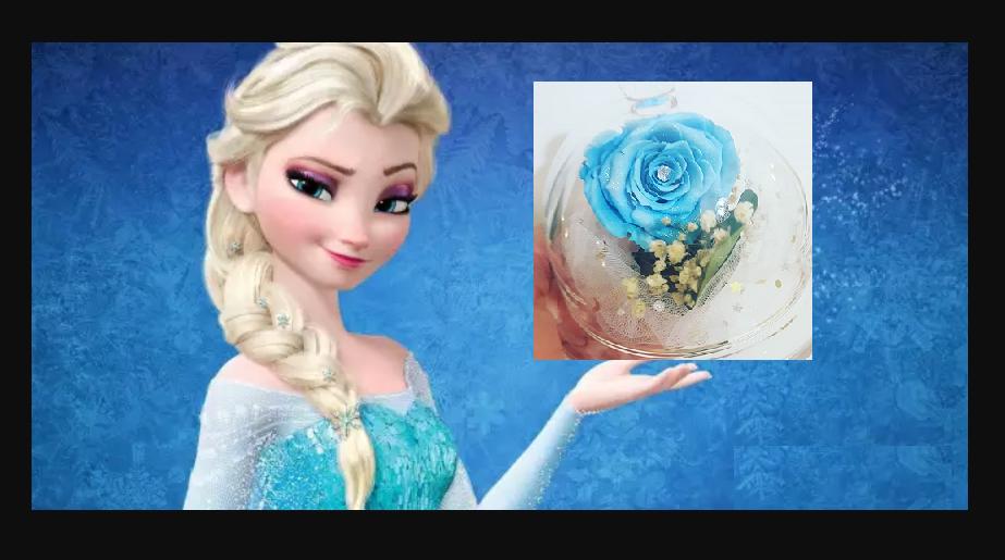 Rose La Reine des Neiges