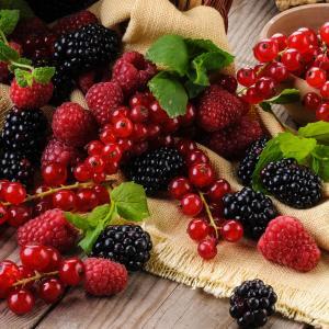 Fruits rouges 6
