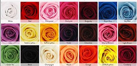 La couleur de votre choix