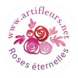 Logo sans bordure