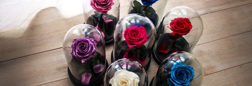 """Les cloches en verre """"La Belle"""""""