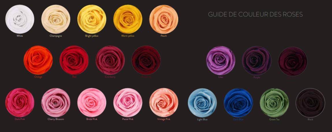Palette couleur 1