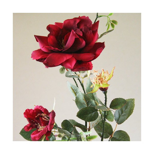 rose-eglantine-artificielles.jpg