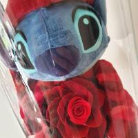 Stitch 5 artifleurs